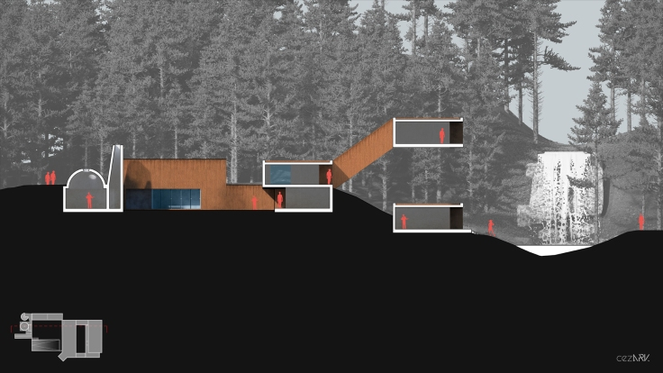 House in Forest_Section A_cezark