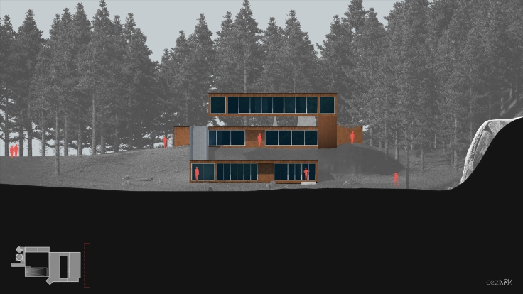 House in Forest_Section B_cezark